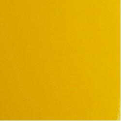 2080-G25 Gloss Sunflower