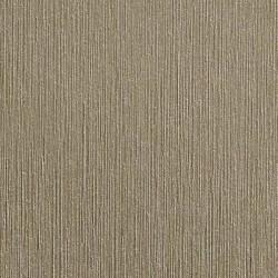 2080-BR230 Brushed Titanium